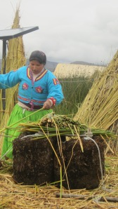 Uros indian showing us how they build the floating islands